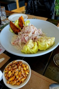 DSC02787-ceviche (FILEminimizer)