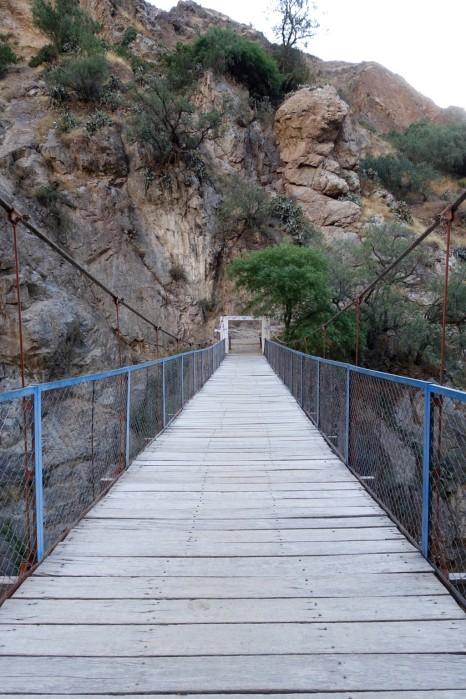 Pont menant à l'oasis