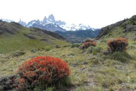 argentine-el-chalten DSC01394