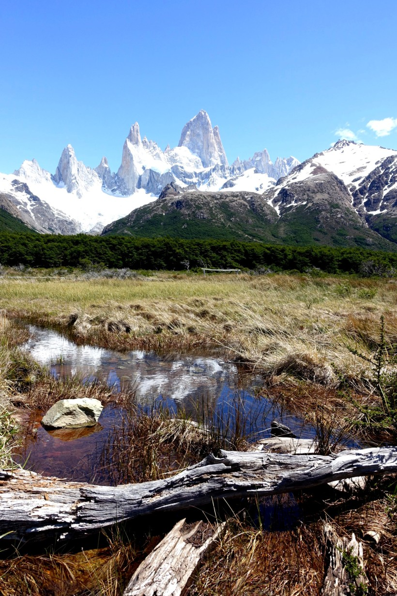 argentine-el-chalten DSC01547