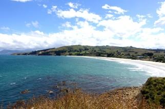 nouvelle-zelande_oamaru-dunedin-otago DSC03113