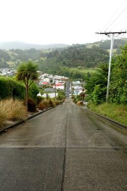 nouvelle-zelande_oamaru-dunedin-otago DSC03132