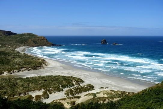 nouvelle-zelande_oamaru-dunedin-otago DSC03156
