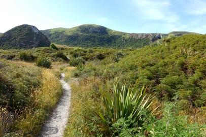 nouvelle-zelande_oamaru-dunedin-otago DSC03262