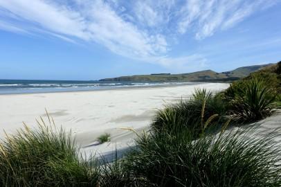 nouvelle-zelande_oamaru-dunedin-otago DSC03264