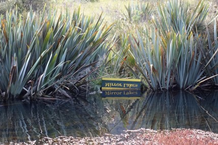 nouvelle-zelande_te-anau-milford-sound DSC03626