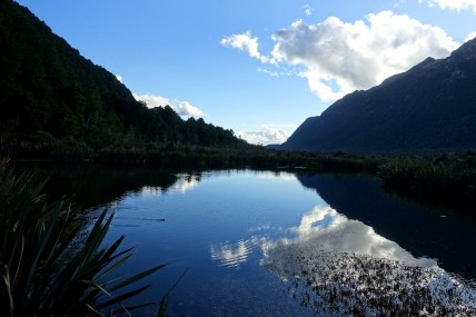 nouvelle-zelande_te-anau-milford-sound DSC03631