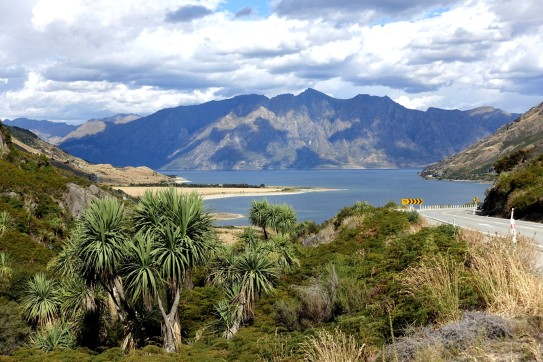 nouvelle-zelande_wanaka-haast DSC03822