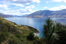 nouvelle-zelande_wanaka-haast DSC03826