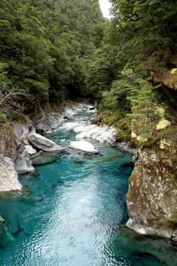 nouvelle-zelande_wanaka-haast DSC03835