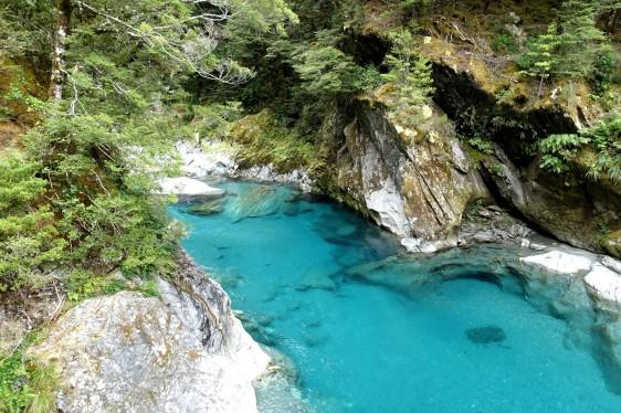 nouvelle-zelande_wanaka-haast DSC03839