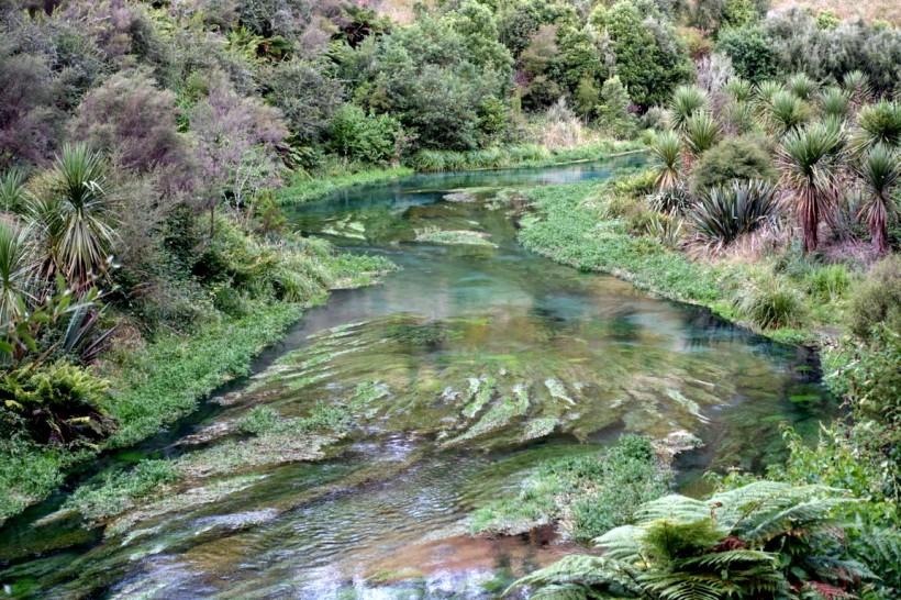 nouvelle-zelande_wellington-auckland DSC04111