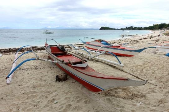PHILIPPINES_malapascua DSC05441