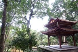 VIETNAM-hue DSC05983