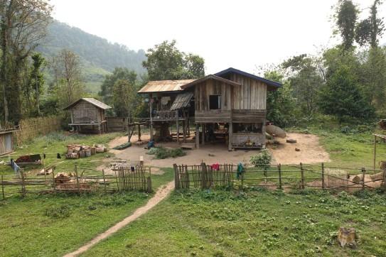 laos_luang-namtha DSC07663