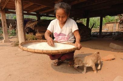 laos_luang-namtha DSC07702