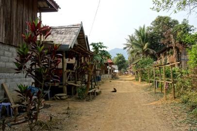 laos_muang-ngoy DSC07368