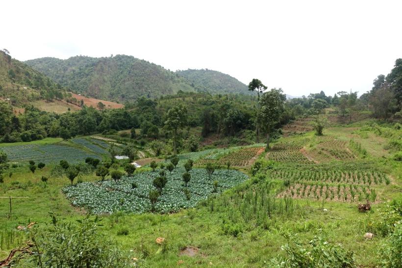Myanmar_Lac Inle DSC03220