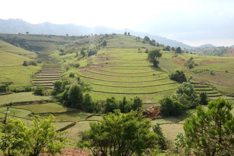 Myanmar_Lac Inle DSC03283