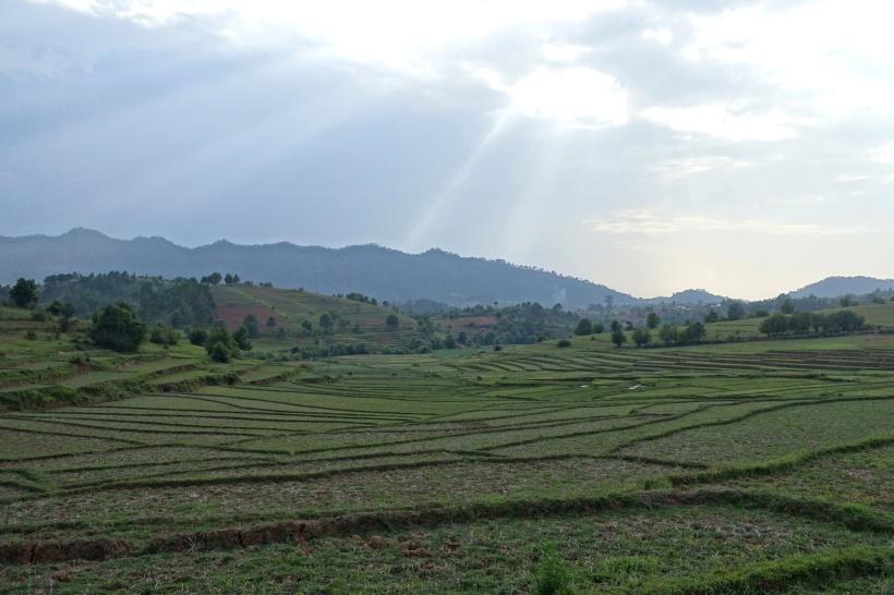 Myanmar_Lac Inle DSC03297