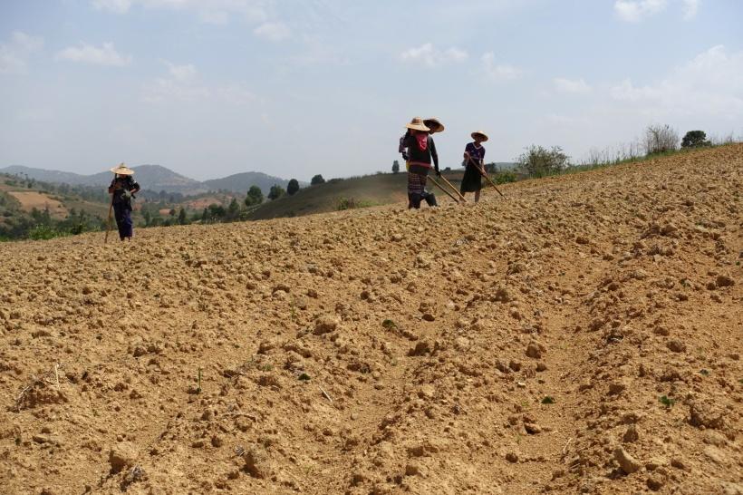 Myanmar_Lac Inle DSC03326