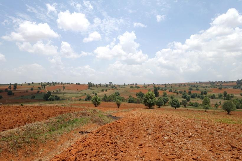 Myanmar_Lac Inle DSC03345