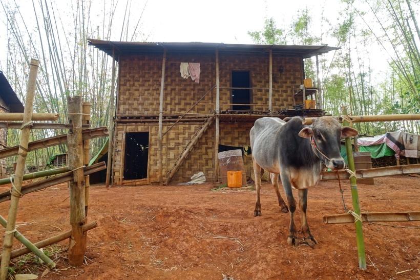 Myanmar_Lac Inle DSC03369