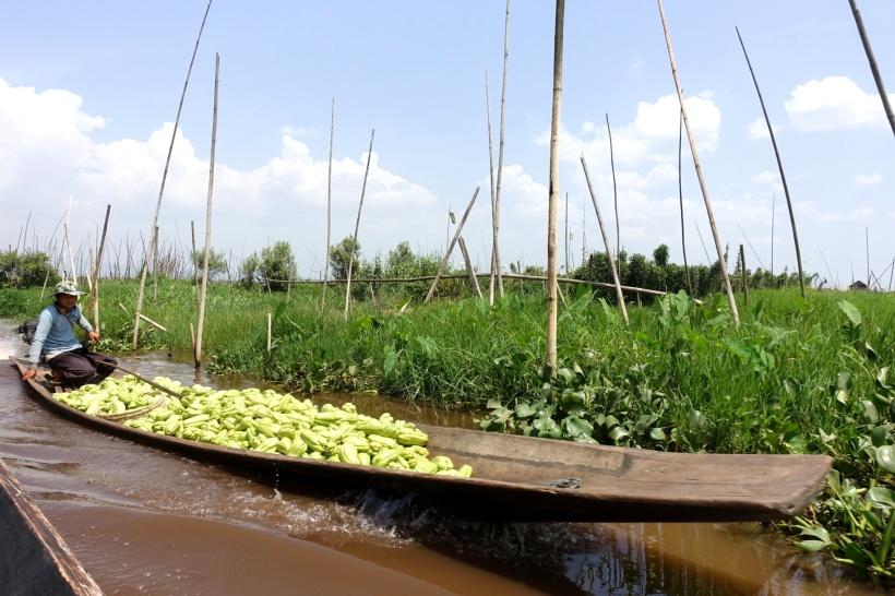 Myanmar_Lac Inle DSC03405