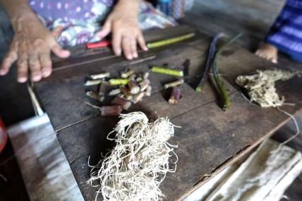 Myanmar_Lac Inle DSC03471