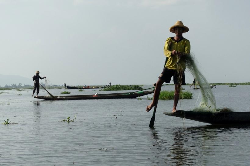 Myanmar_Lac Inle DSC03625