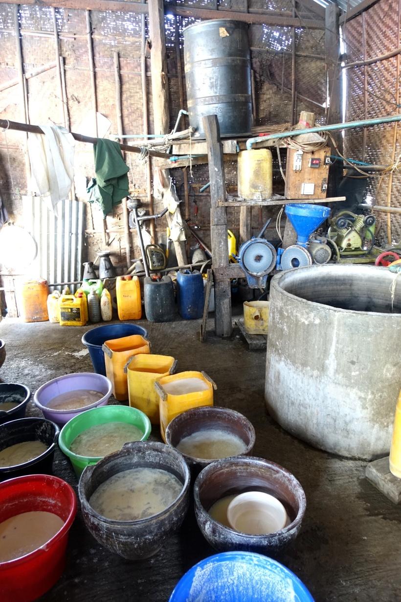 Myanmar_Lac Inle DSC03670