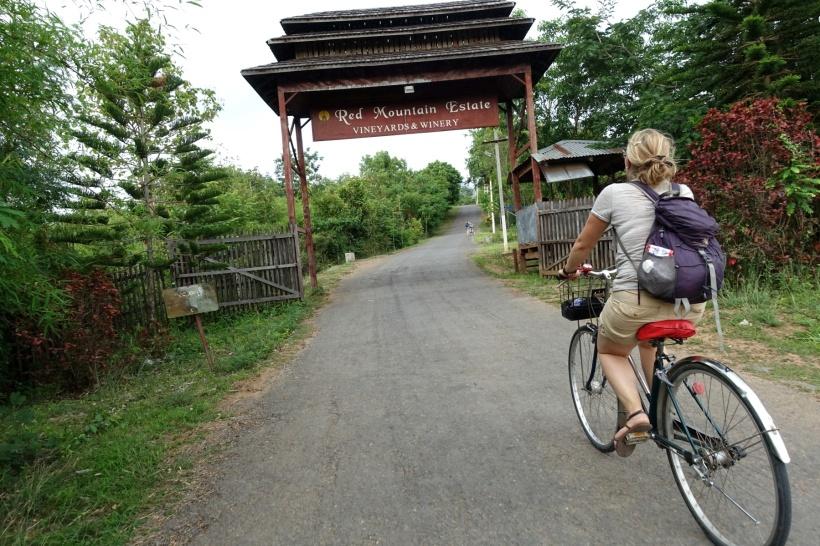 Myanmar_Lac Inle DSC03697