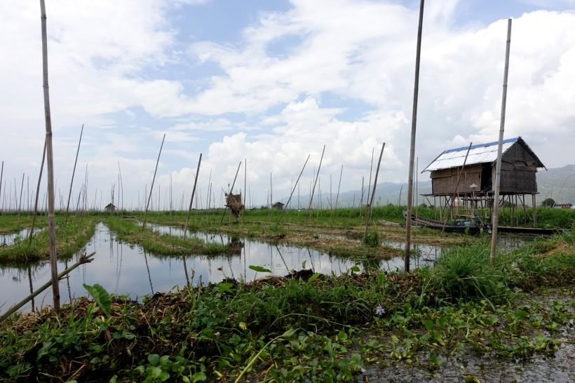 Myanmar_Lac Inle DSC03870