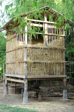 cambodge_kratie DSC09595