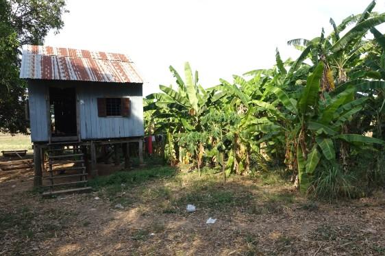 cambodge_kratie DSC09598