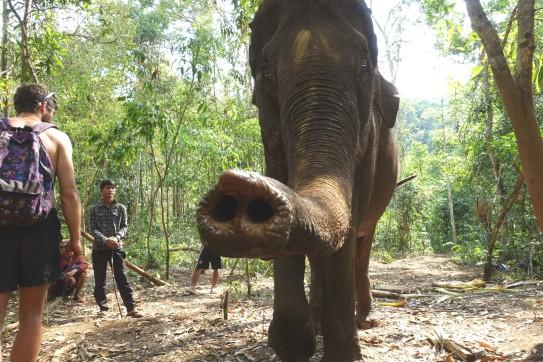 cambodge_sen-monorom_mondulkiri DSC00039