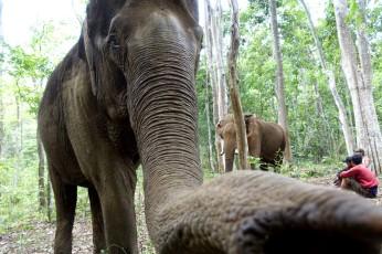 cambodge_sen-monorom_mondulkiri DSC09758