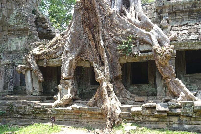 cambodge_siem-reap_angkor DSC00868_preah-khan
