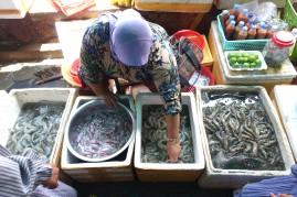 DSC01315 cambodge_kep