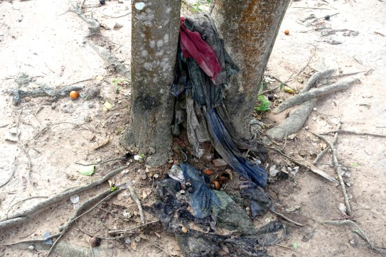 DSC01470 _cambodge_phnom-penh