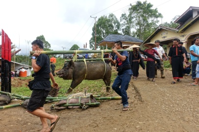 Indonesie_Sulawesi_Toraja_Rantepao DSC04640