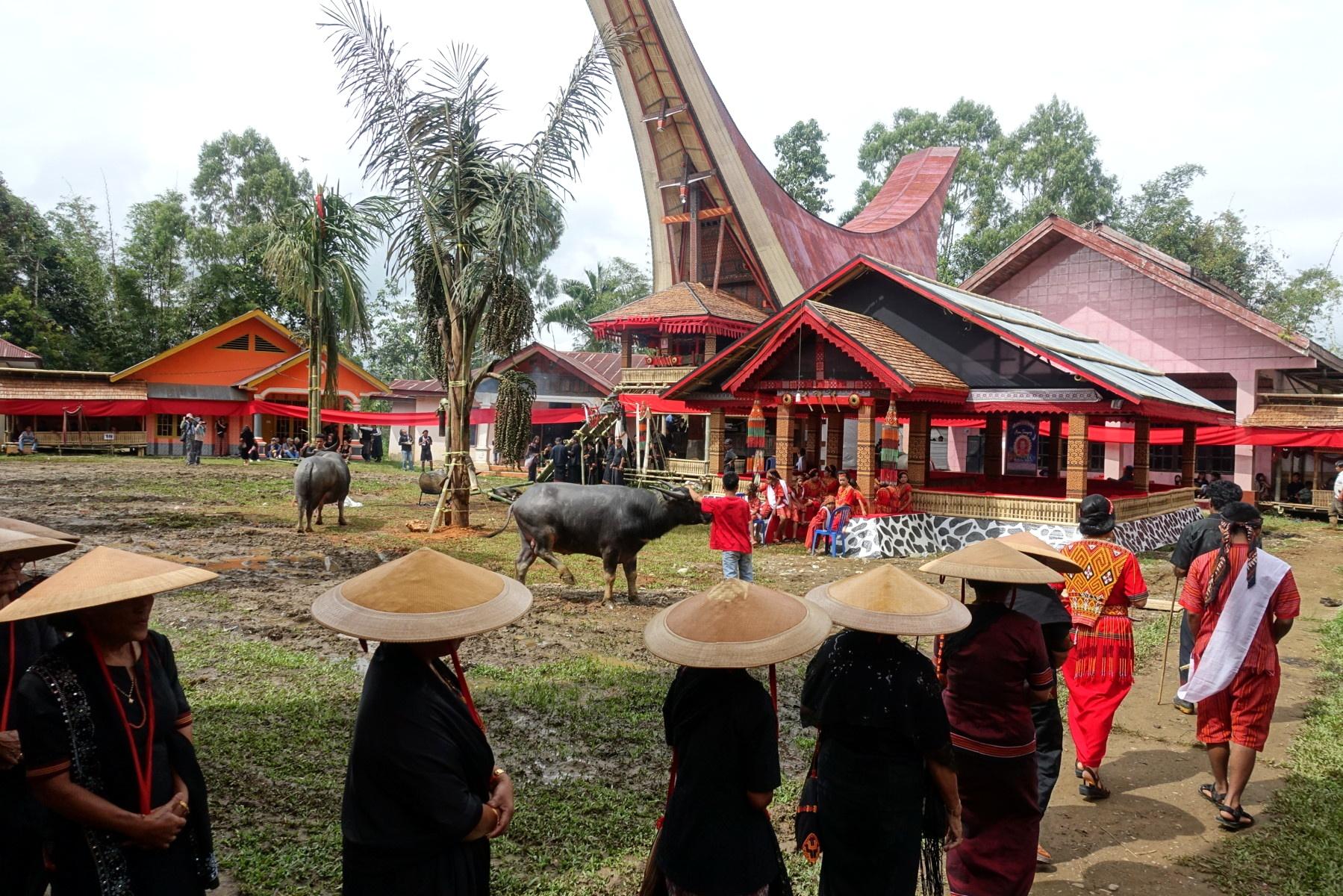 Indonesie_Sulawesi_Toraja_Rantepao DSC04646