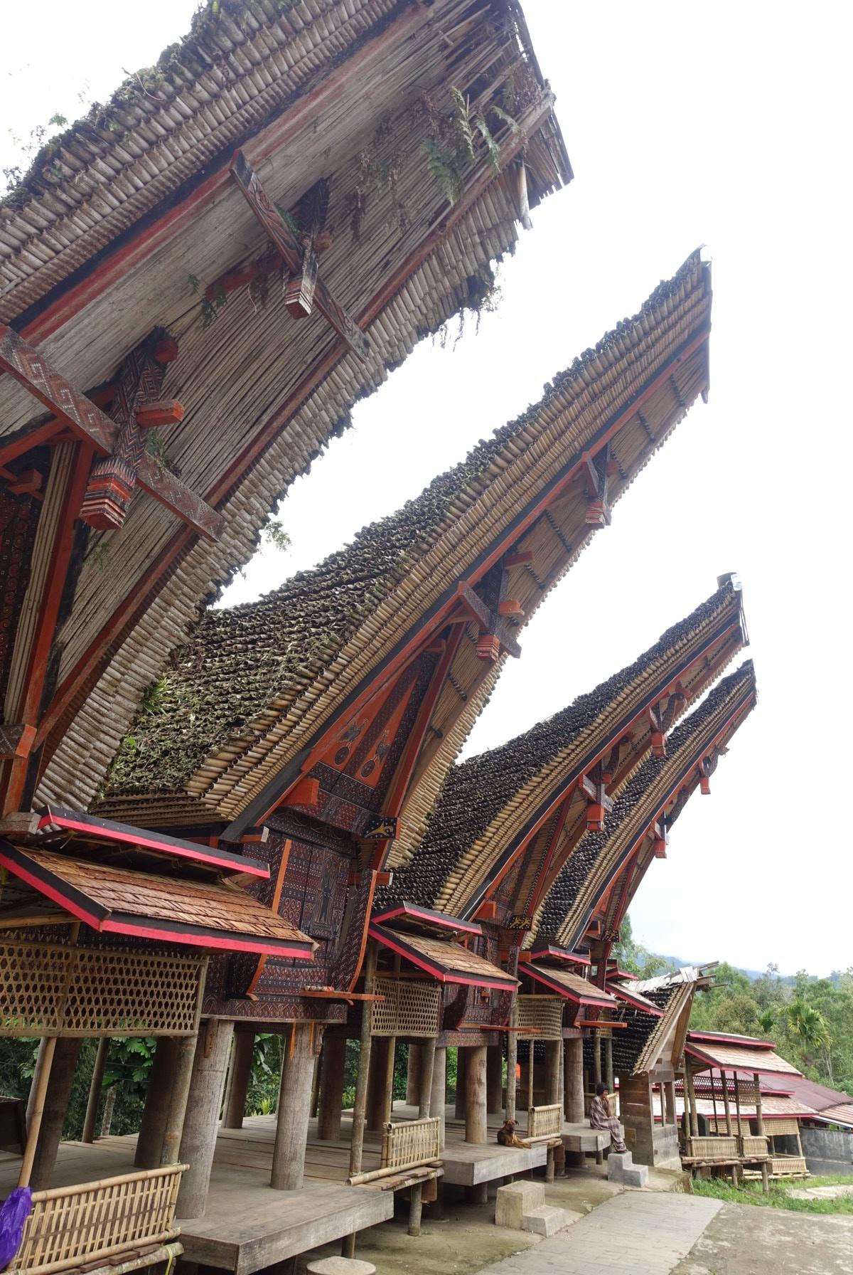 Indonesie_Sulawesi_Toraja_Rantepao DSC04797