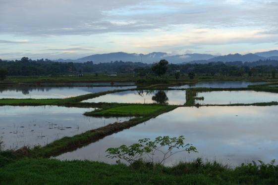 Indonesie_Sulawesi_Toraja_Rantepao DSC04960