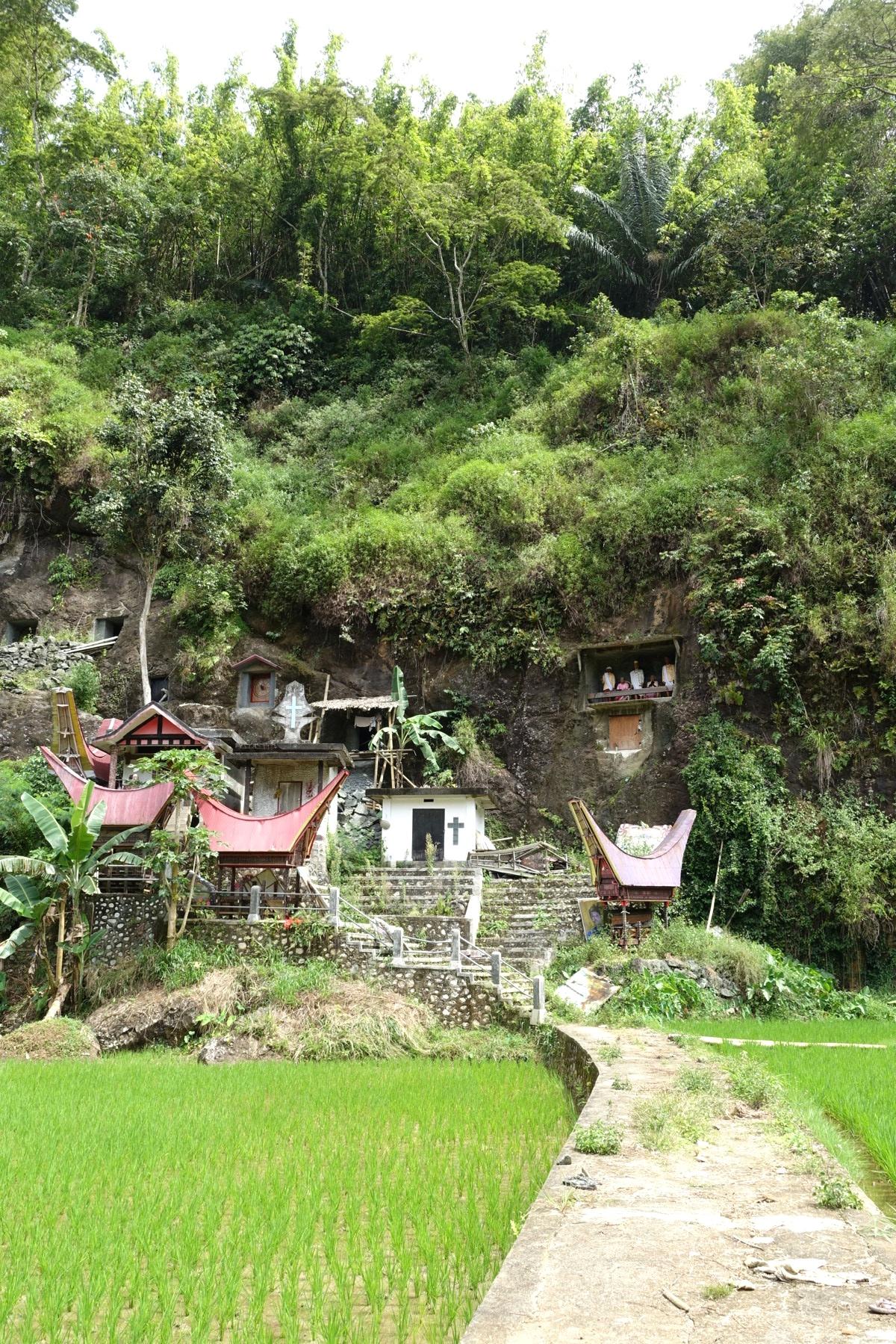 Indonesie_Sulawesi_Toraja_Rantepao DSC05096