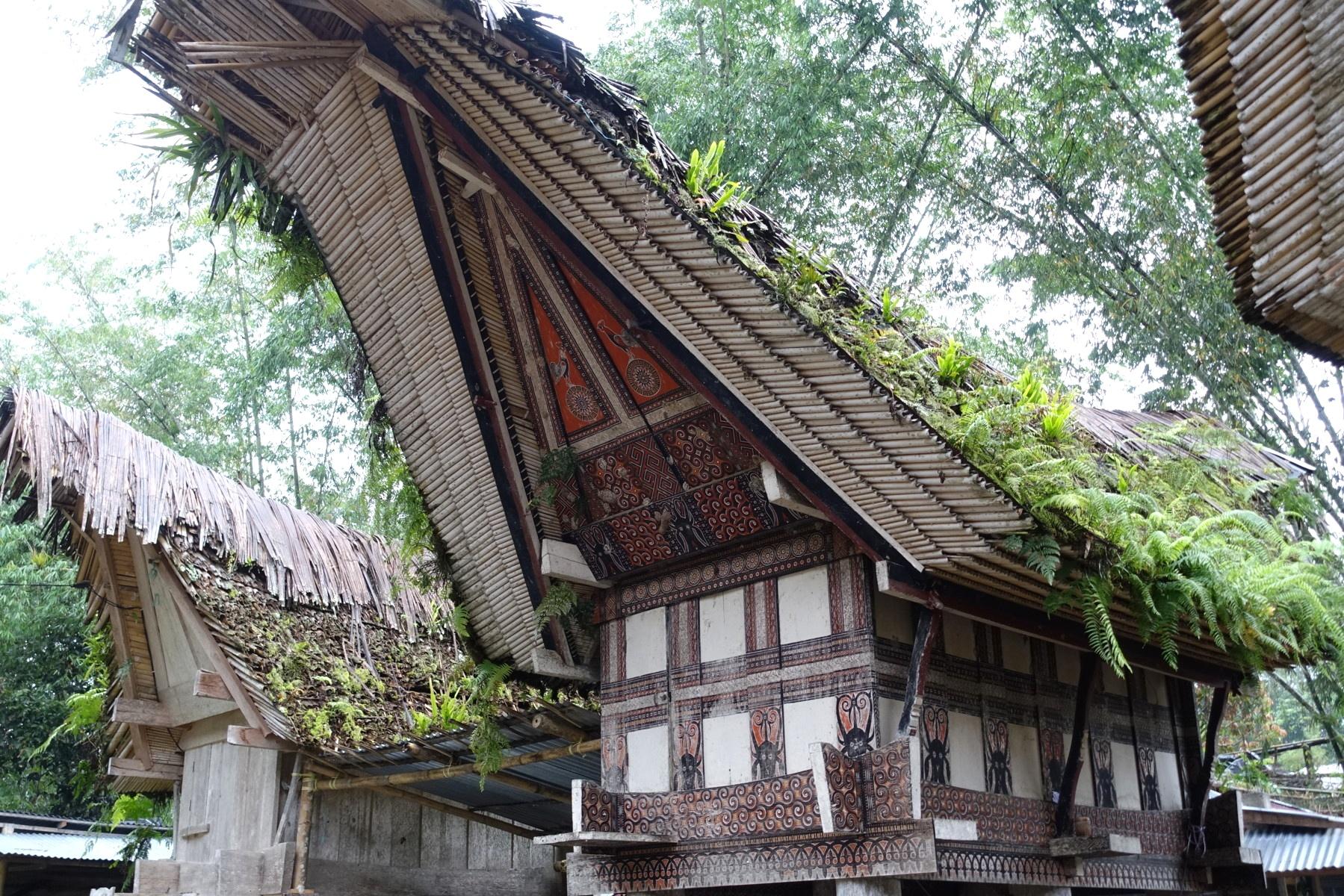 Indonesie_Sulawesi_Toraja_Rantepao DSC05151