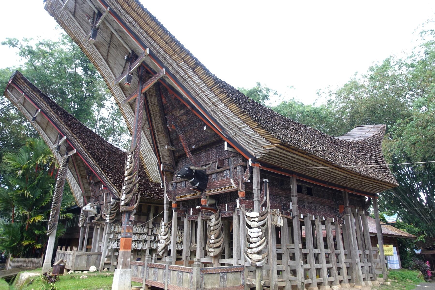 Indonesie_Sulawesi_Toraja_Rantepao DSC05162
