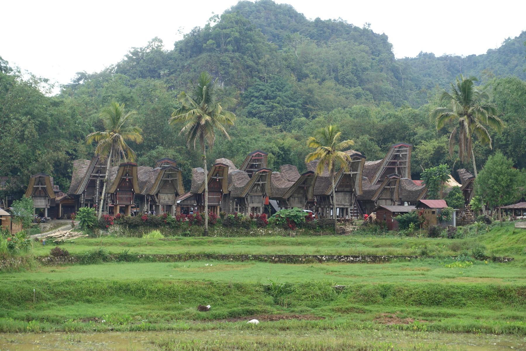 Indonesie_Sulawesi_Toraja_Rantepao DSC05137